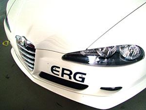 ERGの切り抜きステッカー